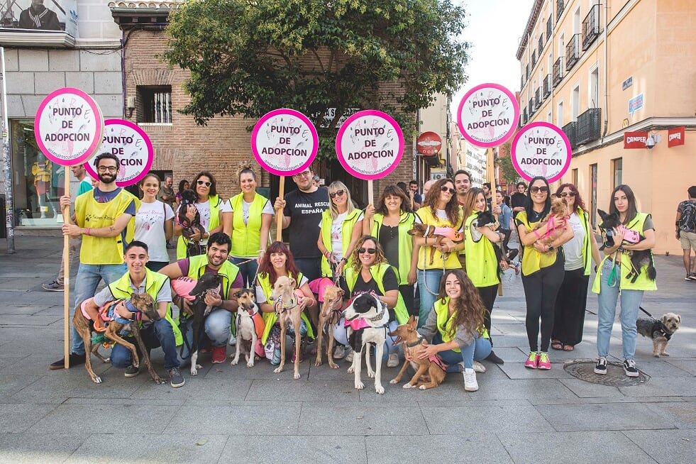 Animal Rescue España